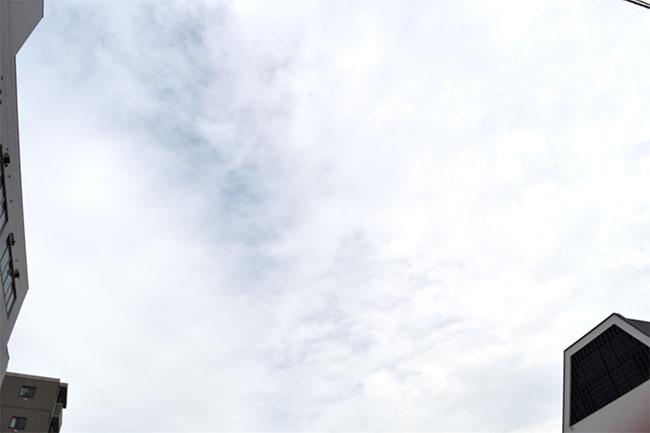 今日の広島は涼しくなりました。