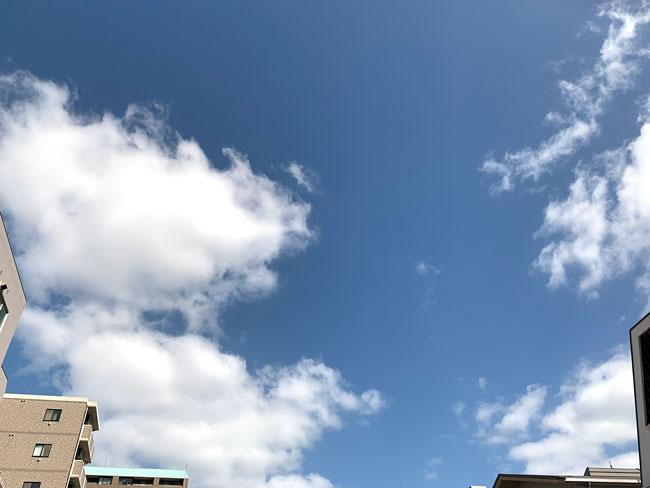 広島市内も強い風が吹きました。そろそろ冬布団の出番です