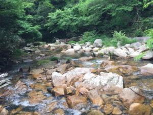 渓流の画像。パイプ枕が洗える、というイメージ画像。