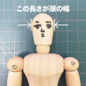 頭の幅の図解